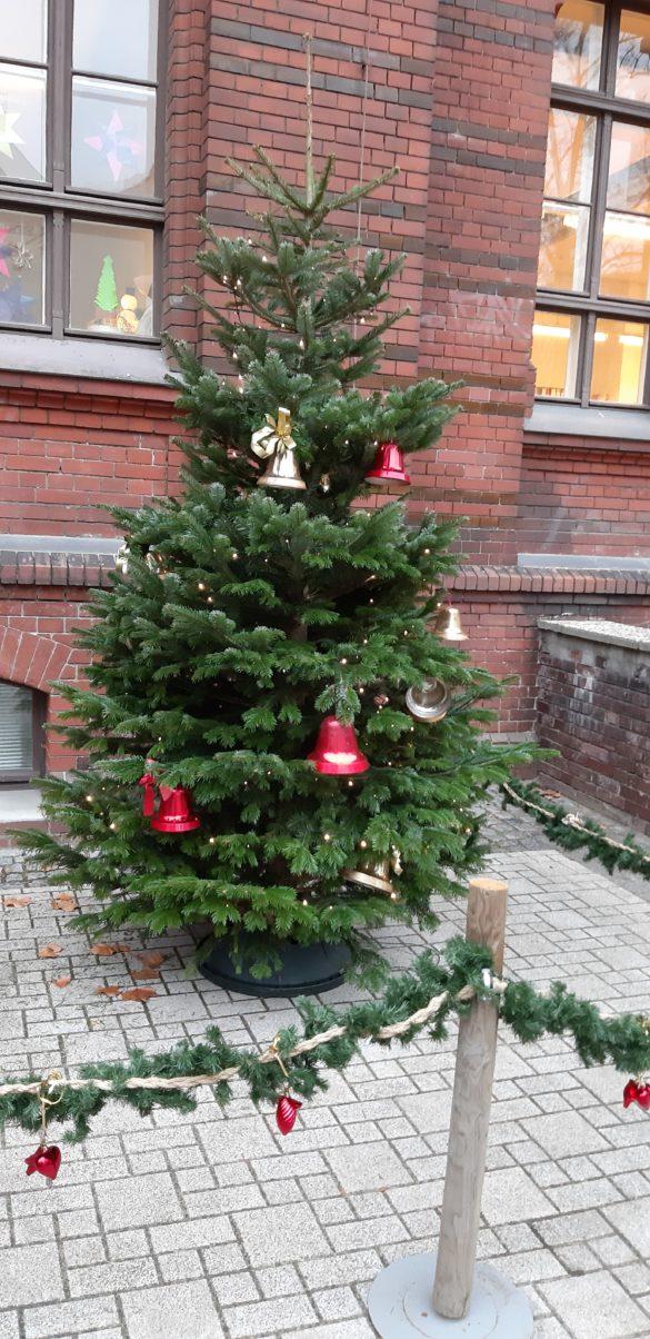 Weihnachten im Hofgarten